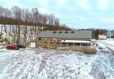Somerset/Cambria County Commercial For Sale: 456 Kinmill Rd