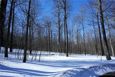 Somerset/Cambria County Residential Lots & Land For Sale: Lot #20 Pheasant Run