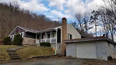 Somerset/Cambria County Single Family Home For Sale: 154 Janet St