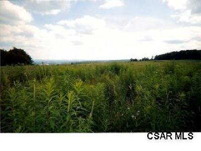 Somerset/Cambria County Residential Lots & Land For Sale: Lot #1 Lyons Road