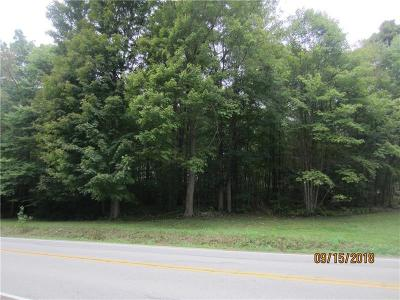 Somerset/Cambria County Residential Lots & Land For Sale: Copper Kettle Hwy