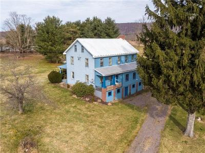 Somerset/Cambria County Single Family Home For Sale: 3106 Mount Davis Rd