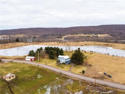 Somerset/Cambria County Residential Lots & Land For Sale: 3106 Mount Davis Rd