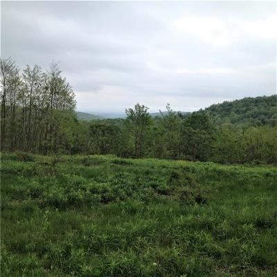 Somerset/Cambria County Residential Lots & Land For Sale: 749 Fire Tower Road