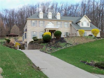 Penn Hills Single Family Home For Sale: 7943 Dollman Road