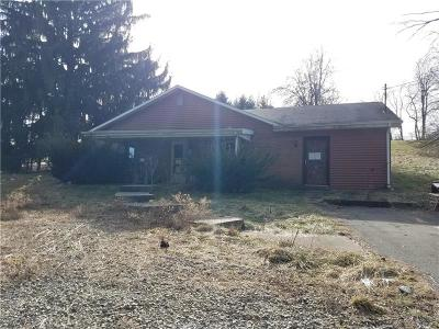 North Huntingdon Single Family Home For Sale: 1060 Hahntown Wendel Rd