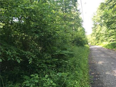 Somerset/Cambria County Residential Lots & Land For Sale: 5 Lots Matterhorn Rd.