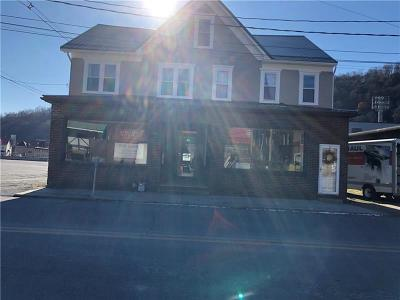 Somerset/Cambria County Commercial For Sale: 32 Walnut St