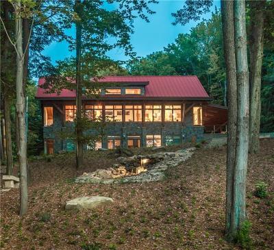 Indian Lake Boro Single Family Home For Sale: 1149 Peninsula Drive