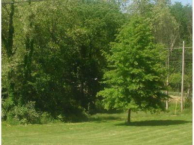 Upper St. Clair Residential Lots & Land For Sale: 31 (Lot) Thorntree Drive