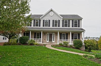 Single Family Home Active Under Contract: 192 Cynthia Dr