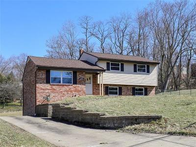 Upper St. Clair Single Family Home For Sale: 1257 Satellite Circle