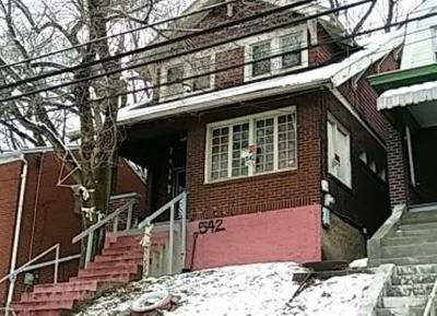 Wilkinsburg Single Family Home For Sale: 542 Midland St