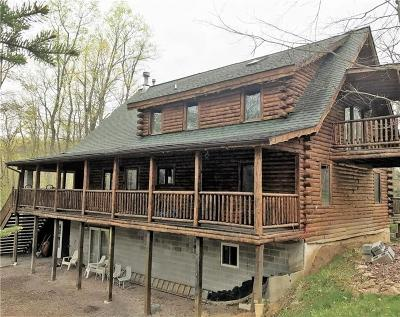 Somerset/Cambria County Single Family Home For Sale: 918 Wilkins Hollow Rd