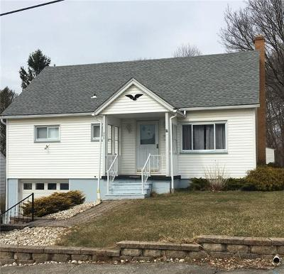 Somerset/Cambria County Single Family Home For Sale: 866 Leisure