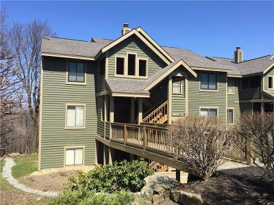 Somerset/Cambria County Condo Contingent: 5229 Summit View Court