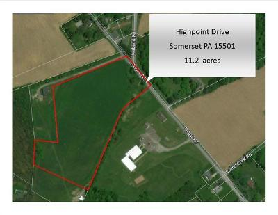 Somerset/Cambria County Farm For Sale: Highpoint Drive