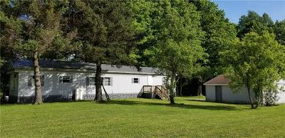 Somerset/Cambria County Single Family Home For Sale: 1071 Boy Scout Road