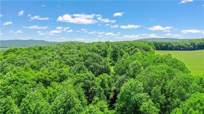 Somerset/Cambria County Residential Lots & Land For Sale: Lower Whites Crk