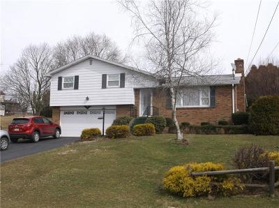 Westmoreland County Single Family Home For Sale: 815 Seton View Dr