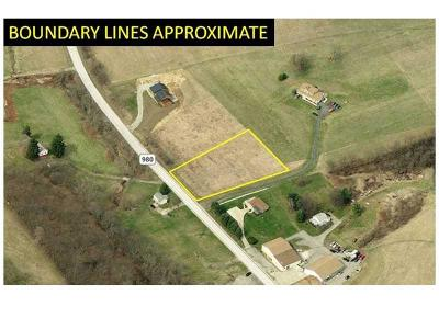 Residential Lots & Land For Sale: Lot 1 Route #980