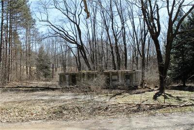 Somerset/Cambria County Mobile/Manufactured For Sale: Rd#1 Pine Lane