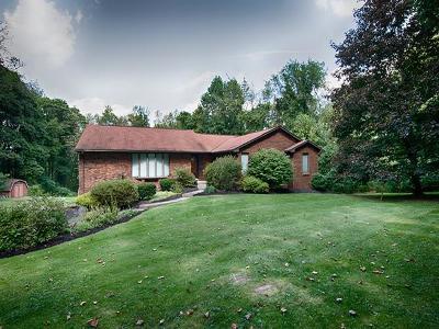 Single Family Home For Sale: 2005 Bushy Run