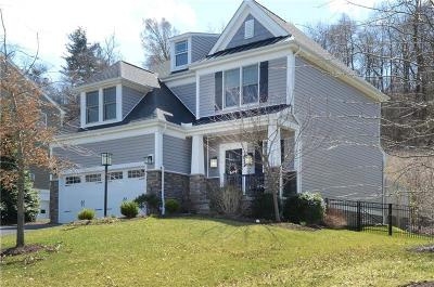 Single Family Home For Sale: 1099 Woodlawn Drive