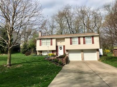 Bethel Park Single Family Home For Sale: 568 Fruitwood Dr