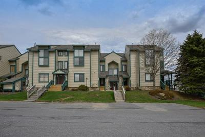 Somerset/Cambria County Condo/Townhouse For Sale: 8058 Meadowridge