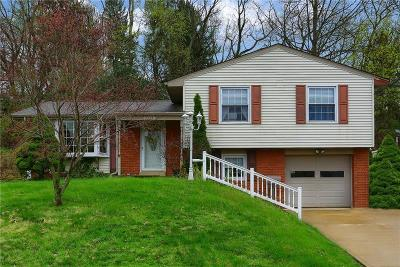 Bethel Park Single Family Home For Sale: 3029 Eastview Drive