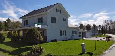 Somerset/Cambria County Single Family Home For Sale: 272 Pompey Hill Rd