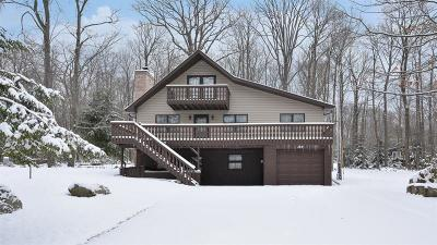 Somerset/Cambria County Single Family Home For Sale: 144 Kings Mountain Rd