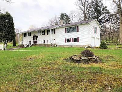 Somerset/Cambria County Single Family Home For Sale: 120 Garrett Shortcut Rd