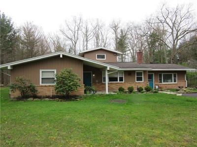 Somerset/Cambria County Single Family Home For Sale: 128 Chaunceys Woods Rd
