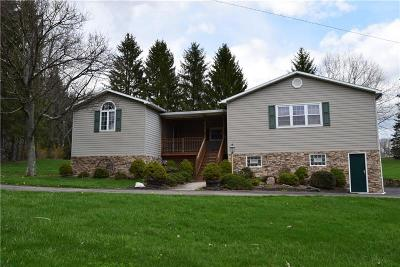 Somerset/Cambria County Single Family Home For Sale: 2668 Copper Kettle Highway