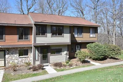 Somerset/Cambria County Condo/Townhouse For Sale: 60 Swiss Mountain Drive