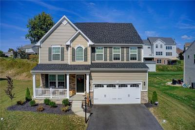 Single Family Home For Sale: 376 Brandywine Drive