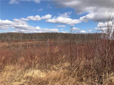 Somerset/Cambria County Residential Lots & Land For Sale: Blacks Hill Road
