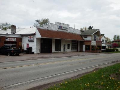 Commercial For Sale: 7052 Mason Dixon Highway