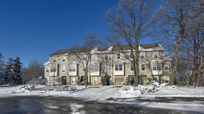 Hidden Valley Condo/Townhouse For Sale: 1102 Forbes Lane