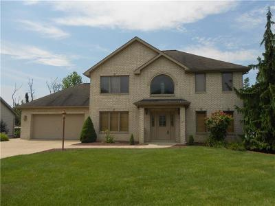 North Huntingdon Single Family Home For Sale: 9530 Don Dr
