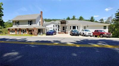 Somerset/Cambria County Single Family Home For Sale: 2280 Whistler Rd
