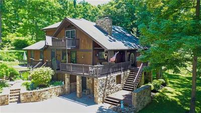 Somerset/Cambria County Single Family Home For Sale: 168 Cherry Tree Ln
