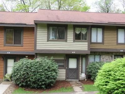 Somerset/Cambria County Condo/Townhouse For Sale: 63 Swiss Mountain Drive