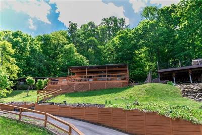 Somerset/Cambria County Single Family Home For Sale: 573 Lakeside Road