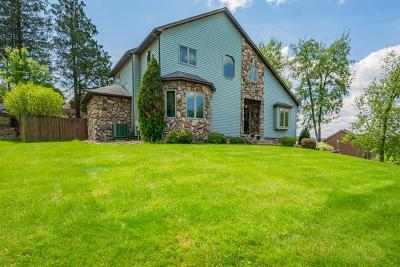 Single Family Home For Sale: 100 Laurel Drive