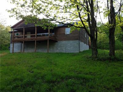 Somerset/Cambria County Single Family Home For Sale: 853 Pletcher Road
