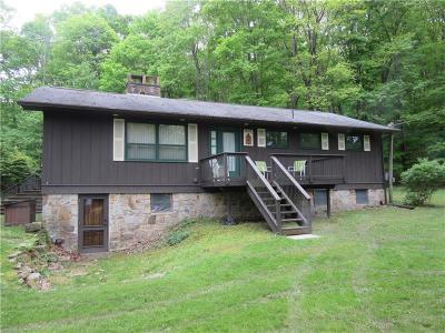 Somerset/Cambria County Single Family Home For Sale: 155 McGill Ln