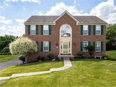 Plum Boro Single Family Home For Sale: 118 Foxtail Drive